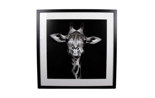 Tavla Giraff Interstil