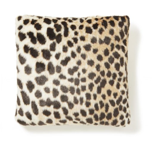 Leo Kuddfodral Leopard