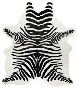 Victor Matta Zebra