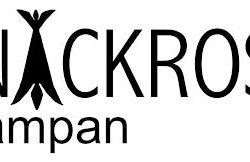 Näckroslampan logo