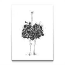 Floral Ostrich Tavla Stormposter
