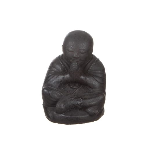 Shaolin Buddhism Kung Fu